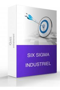 Entrainement Six Sigma Industriel
